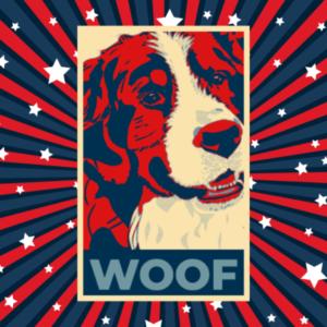 Bernie Sandals Vote WOOF poster